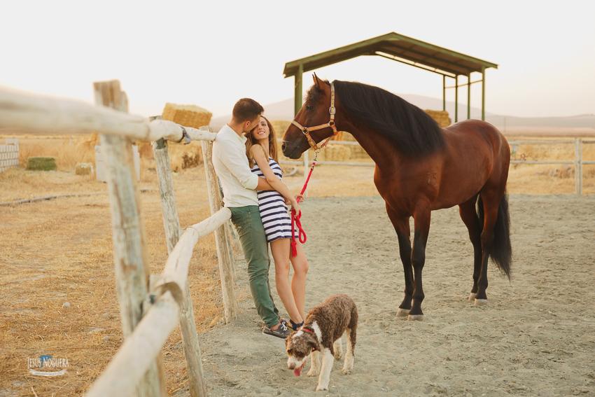 Preboda con caballos en Antequera